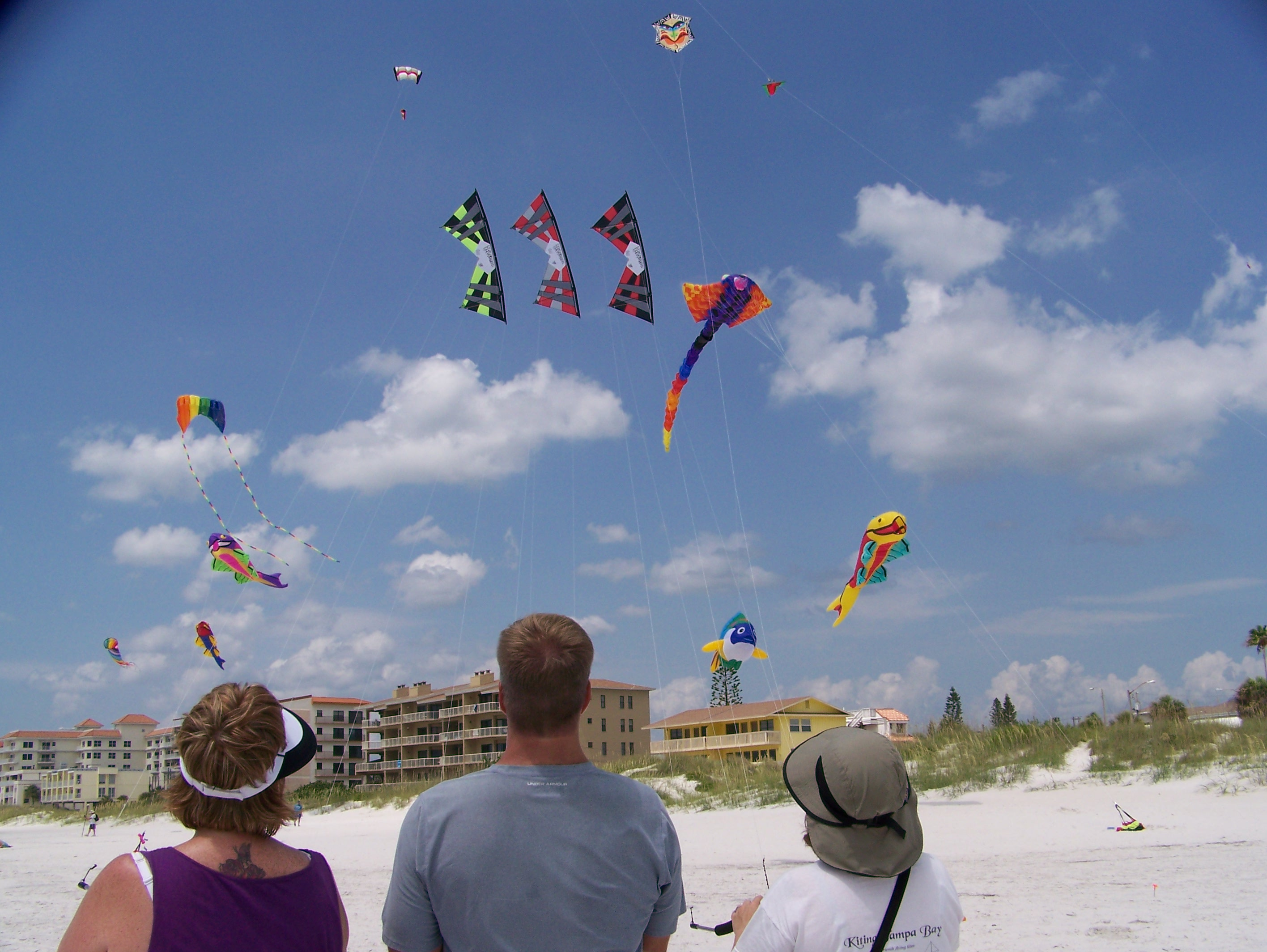 Kiting TampaBay flying Kites at Pier 60. Come fly with us!