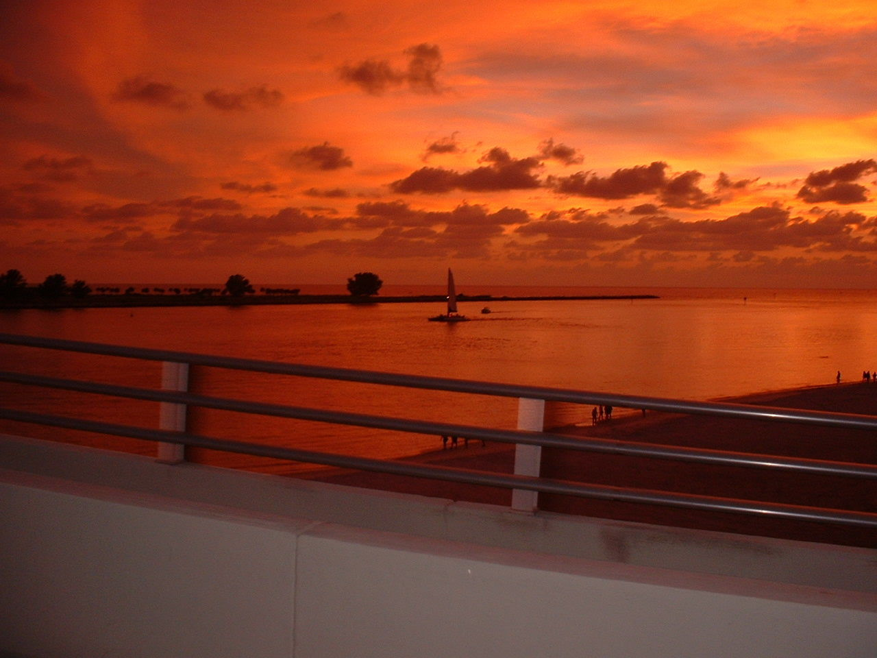 A beautiful picture taken from the bridge from South Beach to Sand Key. Taken from the Beach Trolley.