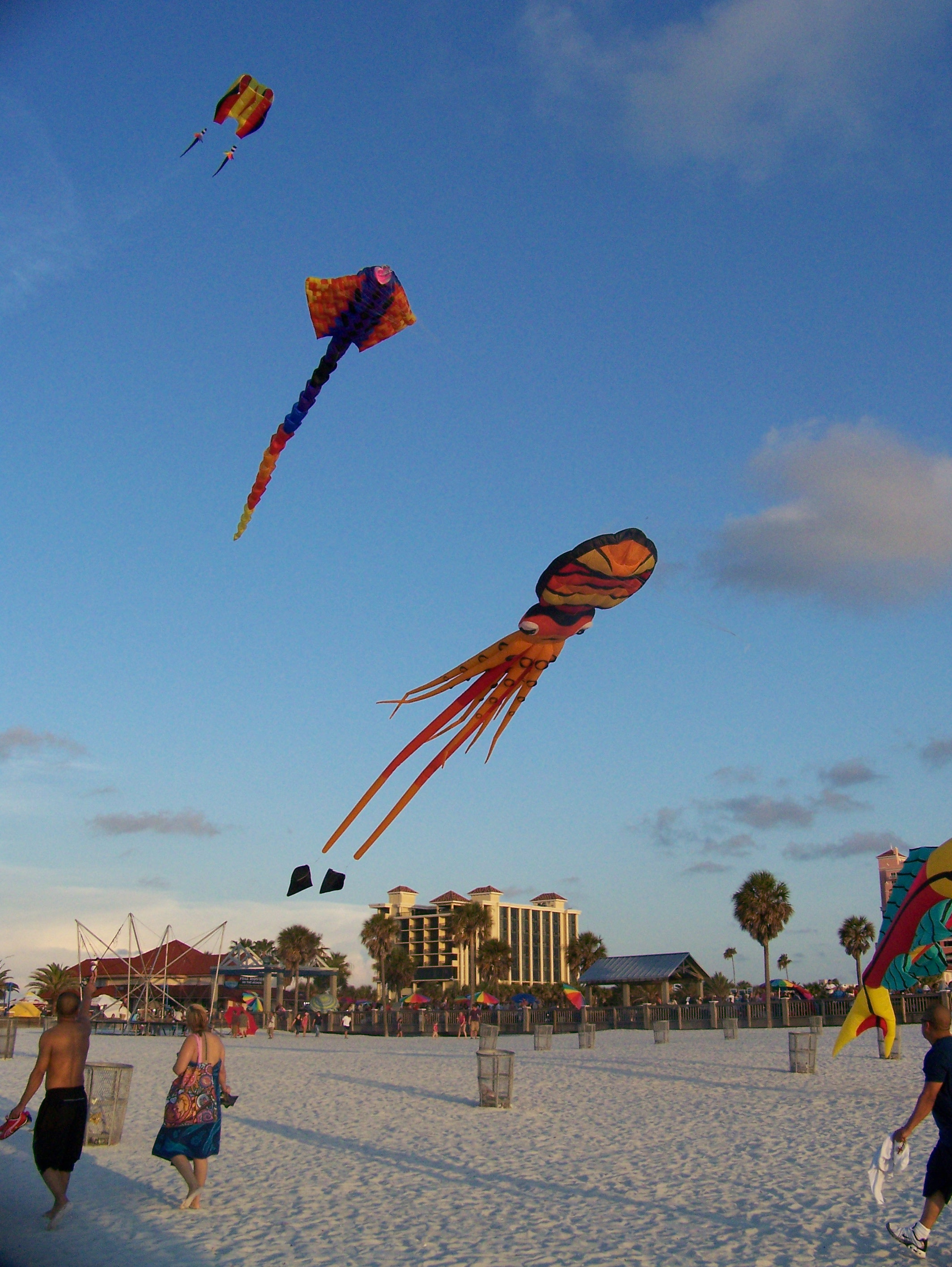 Kiting TampaBay Flying at Pier 60
