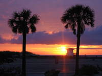 Another great sunset i Clearwater Beach