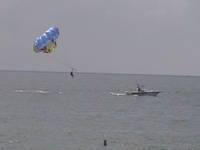 Para Sailing at Clearwater Beach!
